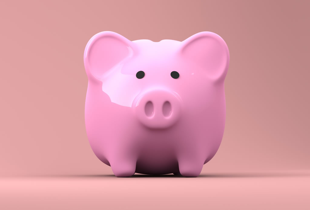 pink-pig